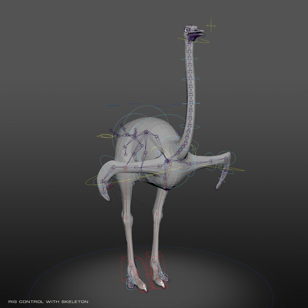 Tpose_RigControl_skeleton.png