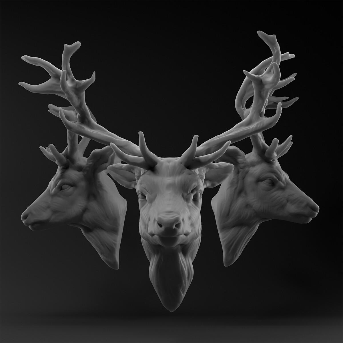 deer_v02_1200.jpg