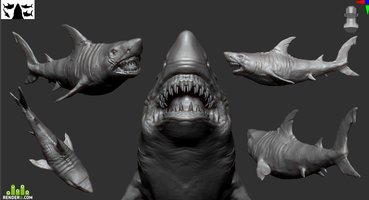 shark_baseSculpt_v01.JPG