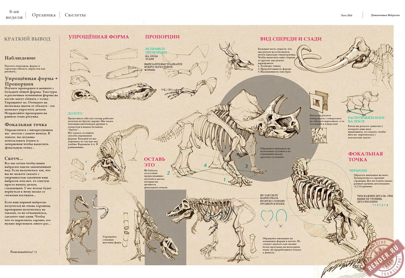 Скелеты.jpg