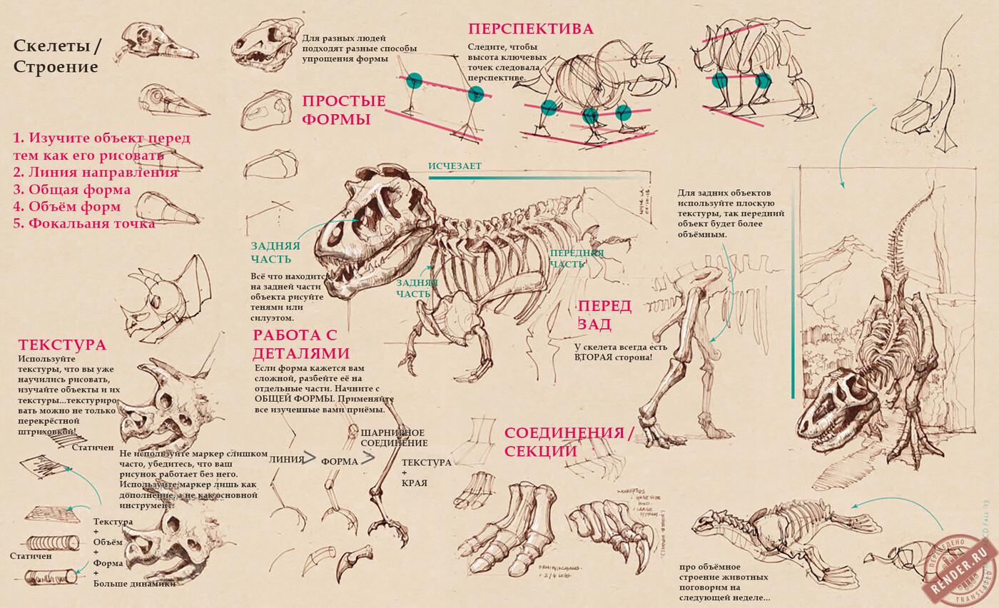 Скелеты 2.jpg