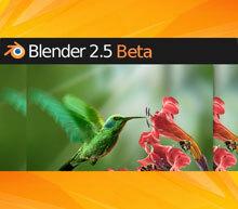 Blender 2.53 beta logo