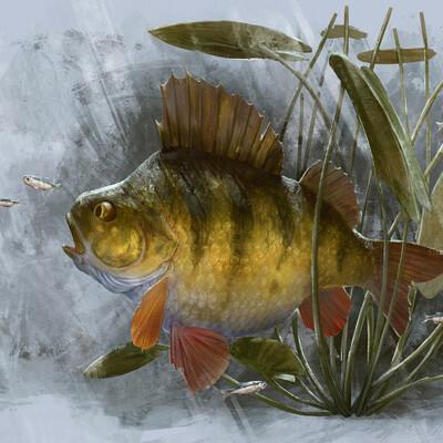 fish, 2D, Digital 2D, DIgital painting, Character, Картун (Cartoon)