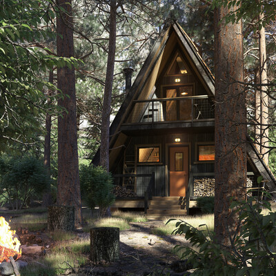 коронаренедер, Экстерьер, дом, лес, 3дмакс, 3д визуализация