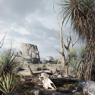 пустыня, аризона, кактус, череп