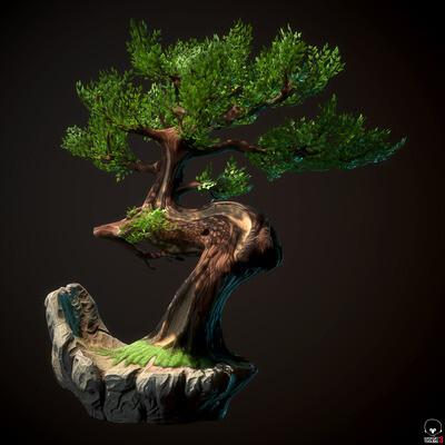 бонсай, дерево, стилизация, PBR, bonsai, handpaint