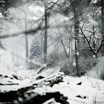 карета, снег, 19 век, великолепная, восьмерка
