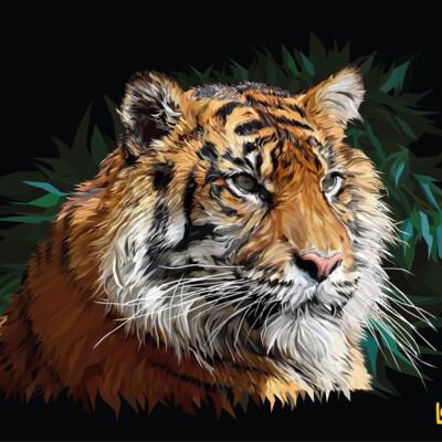 vector, Tiger, animal