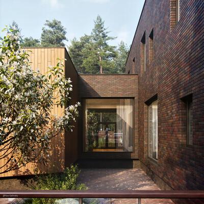 house visualization, 3ds Max, Corona Renderer, Adobe Photoshop, Exterior, archviz, 3d design, rendering, architect