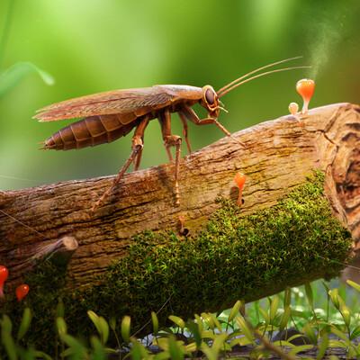 таракан, насекомое, Макро, бревно