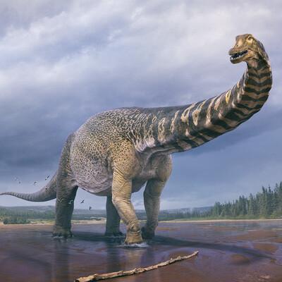 Australotitan, cooperensis, cooper, dino, dinosaur, sauropod, vlad konstantinov, dinosaur art, австралотитан, динозавр